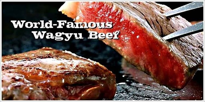 We have WaGyU Beef to order in the Shop …